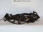 Wire Harness (Used) [Blast]